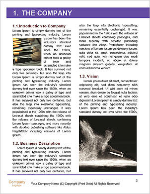 0000090946 Word Template - Page 3