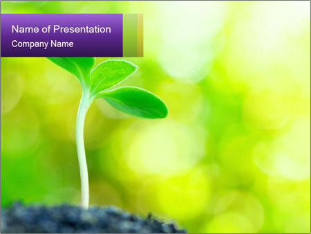 Green Vitality PowerPoint Template