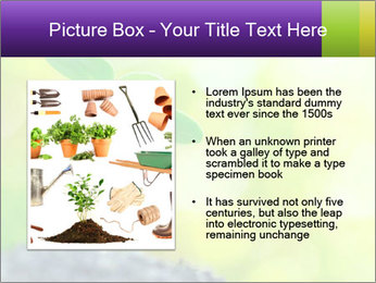 Green Vitality PowerPoint Template - Slide 13