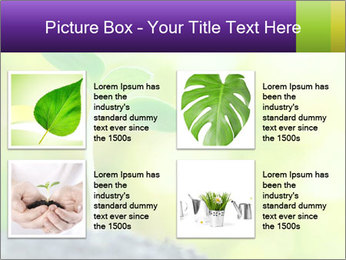 Green Vitality PowerPoint Template - Slide 14