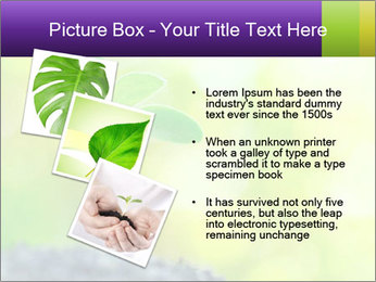 Green Vitality PowerPoint Template - Slide 17
