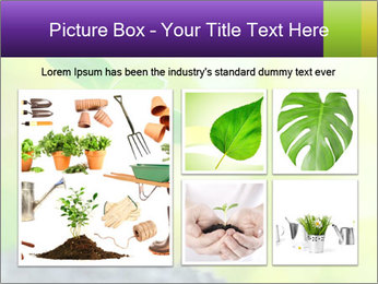 Green Vitality PowerPoint Template - Slide 19