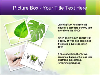 Green Vitality PowerPoint Template - Slide 23