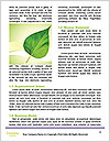 0000090948 Word Templates - Page 4