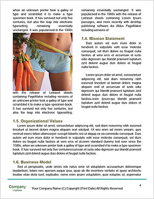 0000090952 Word Template - Page 4