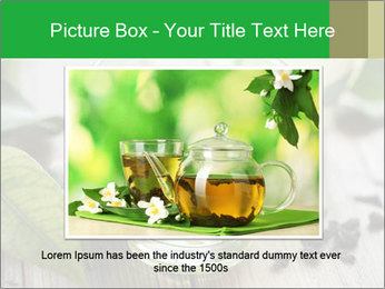Antioxidant Herbal Tea PowerPoint Template - Slide 16