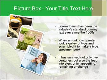Antioxidant Herbal Tea PowerPoint Template - Slide 17