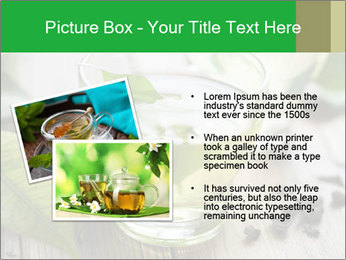 Antioxidant Herbal Tea PowerPoint Template - Slide 20