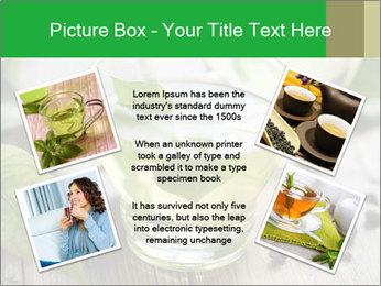 Antioxidant Herbal Tea PowerPoint Template - Slide 24