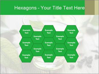 Antioxidant Herbal Tea PowerPoint Template - Slide 44