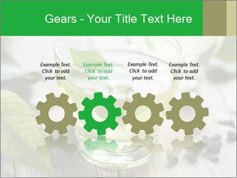 Antioxidant Herbal Tea PowerPoint Template - Slide 48