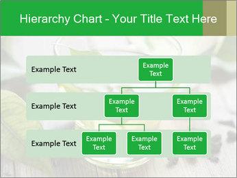 Antioxidant Herbal Tea PowerPoint Template - Slide 67