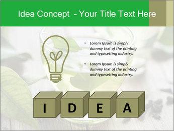 Antioxidant Herbal Tea PowerPoint Template - Slide 80
