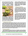 0000090960 Word Templates - Page 4
