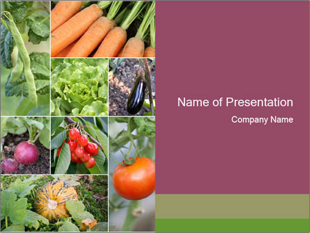 Organic Veggies PowerPoint Templates