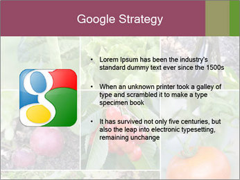 Organic Veggies PowerPoint Template - Slide 10