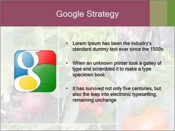 Organic Veggies PowerPoint Templates - Slide 10