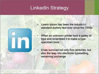 Organic Veggies PowerPoint Templates - Slide 12