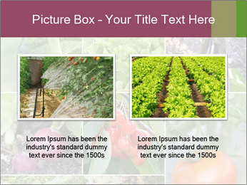 Organic Veggies PowerPoint Template - Slide 18