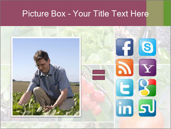 Organic Veggies PowerPoint Template - Slide 21