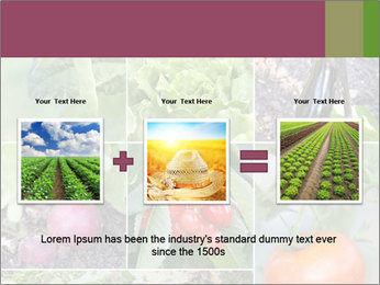 Organic Veggies PowerPoint Template - Slide 22