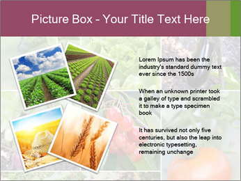 Organic Veggies PowerPoint Template - Slide 23