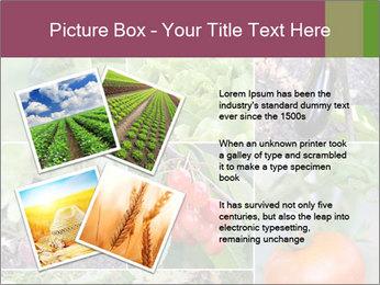 Organic Veggies PowerPoint Templates - Slide 23