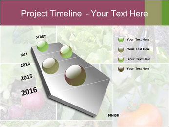 Organic Veggies PowerPoint Template - Slide 26
