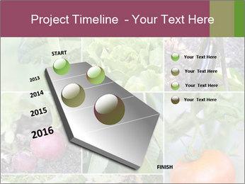 Organic Veggies PowerPoint Templates - Slide 26