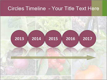 Organic Veggies PowerPoint Templates - Slide 29