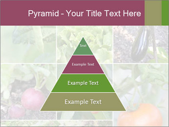 Organic Veggies PowerPoint Template - Slide 30