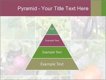 Organic Veggies PowerPoint Templates - Slide 30