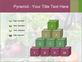 Organic Veggies PowerPoint Template - Slide 31