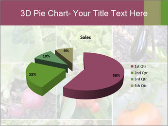 Organic Veggies PowerPoint Template - Slide 35