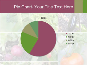 Organic Veggies PowerPoint Template - Slide 36