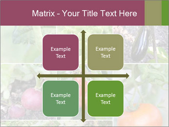 Organic Veggies PowerPoint Template - Slide 37
