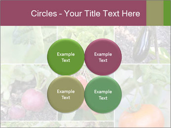 Organic Veggies PowerPoint Templates - Slide 38