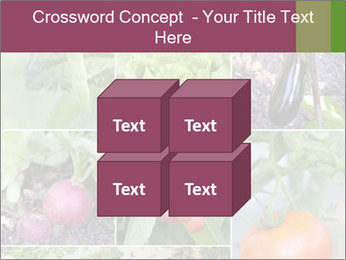Organic Veggies PowerPoint Template - Slide 39