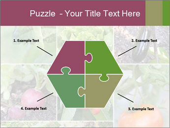 Organic Veggies PowerPoint Template - Slide 40