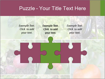 Organic Veggies PowerPoint Template - Slide 42