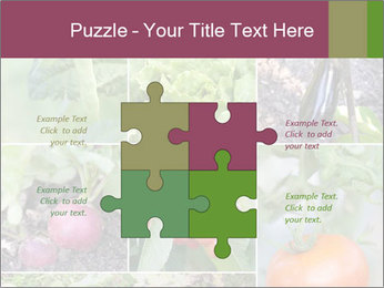 Organic Veggies PowerPoint Template - Slide 43