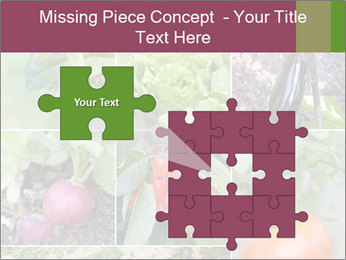 Organic Veggies PowerPoint Template - Slide 45