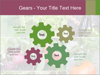 Organic Veggies PowerPoint Templates - Slide 47