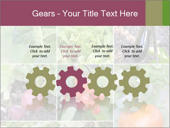 Organic Veggies PowerPoint Template - Slide 48