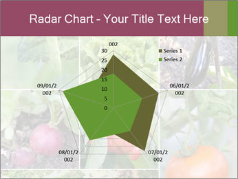 Organic Veggies PowerPoint Template - Slide 51