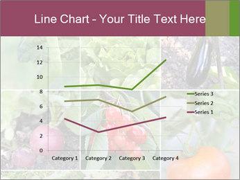 Organic Veggies PowerPoint Templates - Slide 54
