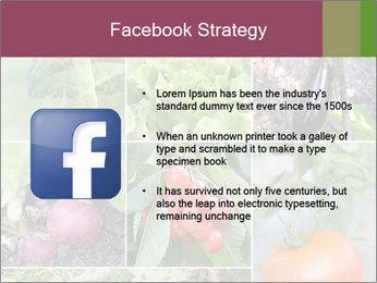 Organic Veggies PowerPoint Templates - Slide 6