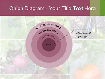 Organic Veggies PowerPoint Template - Slide 61