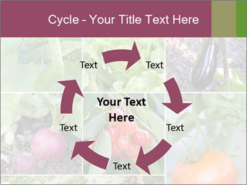 Organic Veggies PowerPoint Template - Slide 62