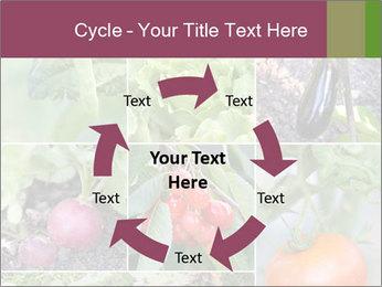Organic Veggies PowerPoint Templates - Slide 62